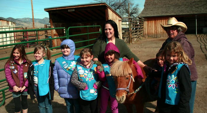 Volunteering at the Horse Protection League